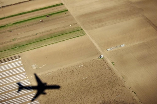 plane over field